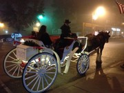 horse drawn carriage in the fog